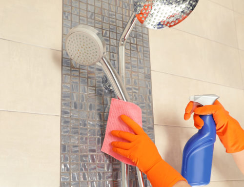 5 DIY Shower Cleaning Tips for a Spotless Bathroom